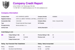 Company Credit Report